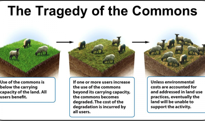 tragedy-of-the-commons3